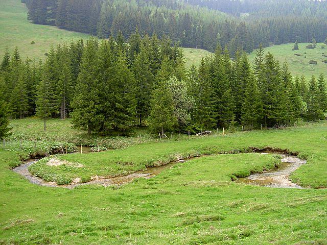 Single wandern steiermark