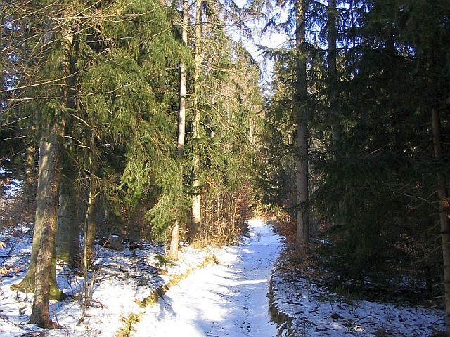 Steiermark singles