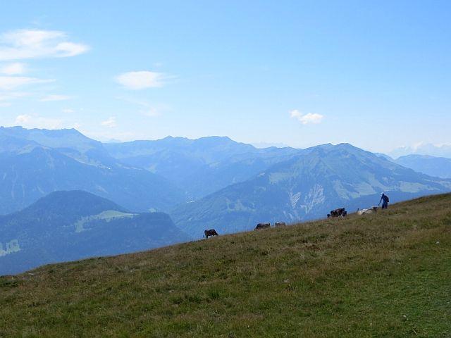 Singles kennenlernen österreich